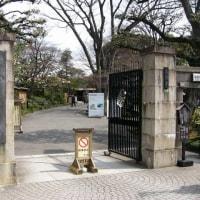 春先の小石川後楽園―都立庭園へ行こう(その8)