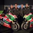 2017 MotoGP オランダ<アッセン>予選