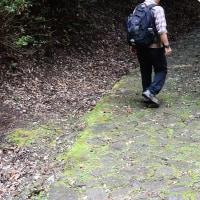 水曜ジョイフルウォークで、柳生街道(滝坂の道)を歩いた。