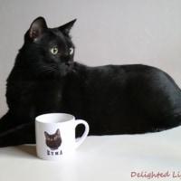 世界にたったひとつ♪クマちゃんのオリジナルマグカップ