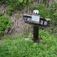 土樽から茂倉岳~武能岳~蓬峠