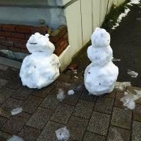 33年ぶりの大雪が  2