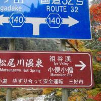 松尾川のモミジ(16-1208)