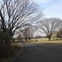 昭和記念公園で遊ぶ