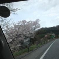 4100km 2週間の旅 その9 (島根へ)