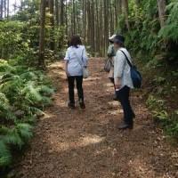 熊野古道を歩いてきました