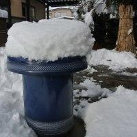 降雪30cm散らかしていた全て物が雪の下となる