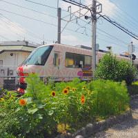 梅雨明けの海の日、太宰府観光列車「旅人」の夏景色を撮影に。