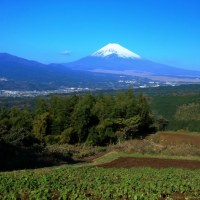 三島から富士山