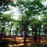 【駒沢公園・日曜日午後】5/28 練習