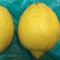 蜂蜜檸檬並びに幾つかの料理 平成29年4月