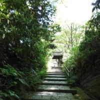 瑞泉寺を行く