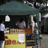 伊佐須美神社「あやめ祭り」白鳥&鯉と孔雀と…。