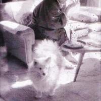 三國連太郎 No.10 ~ ネガフィルム