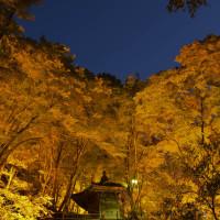 香嵐渓ライトアップ 飯盛山への遊歩道から