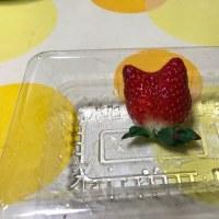 今日のデザート☆