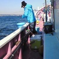 剣崎沖のマダイ釣り