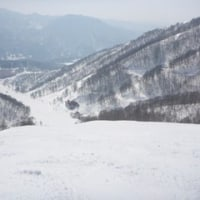 スキー日記-53日目-八方尾根/白馬コルチナ/白馬乗鞍