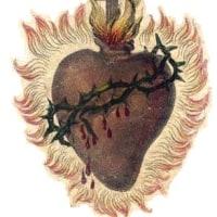 いとも尊き聖体の秘蹟にましまし給うイエズス・キリストは讃美せられさせ給え!6月の聖伝のミサ(ラテン語ミサ)の報告 SSPX JAPAN