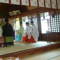 Japanese Traditional Wedding ♡ My daughter①