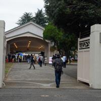 原宿駅側部乗降場(宮廷ホーム)と消火栓