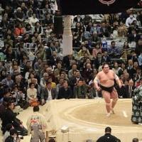相撲が日本の恥部になりかけてるな