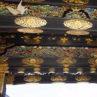 京遊び 十一 二条城 その三