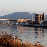 猿猴川を渡る広島高速道