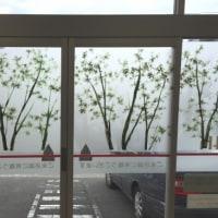 岩田壽秋:木漏れ日の洗濯