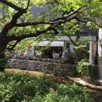 高瀬川界隈 ~ 八重桜とキルフェボン・京都店