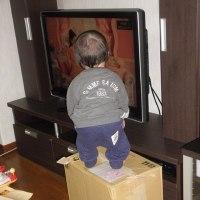 高いところからテレビ見れるぞ。