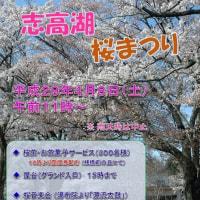 2017年 『志高湖桜まつり』 について