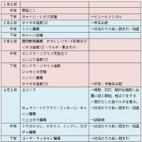 うちの春夏野菜の栽培歴(2017年予定)