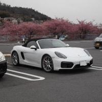 河津桜とフェラーリ