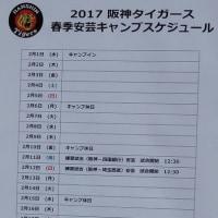 阪神タイガース(2軍)春季安芸キャンプ