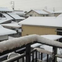 わっ!雪じゃぁね!!