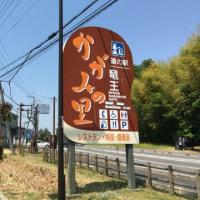 今日は琵琶湖を一周してきました