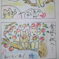 まるココの日々(20)