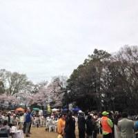 出張ミニミニマーケット~めじろ台万葉公園さくら祭り~
