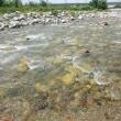 上越&北陸河川は7月末か?