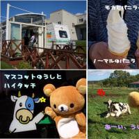 北海道食い倒レポート~函館・最終日。