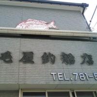 【釣】トラフグ 4/15(野毛屋) 「あの引きを忘れない」