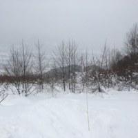 スキー日記-30日目-白馬里山