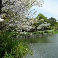 鈴の宮公園