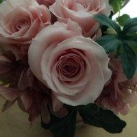 感謝とお祝いのお花♪