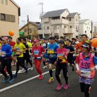 11月20日(日)のレース結果