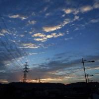 10月23日(日)薄暗い中、早朝散策