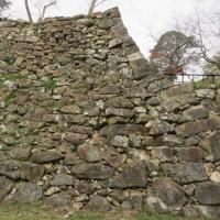 洲本城跡の石垣を視る「初期の石垣・隅石」