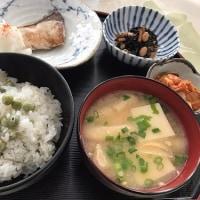 休日ランチ☆豆ごはんで~ぶりの素焼き定食☆
