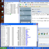 coLinux で Vine Linux 3.2